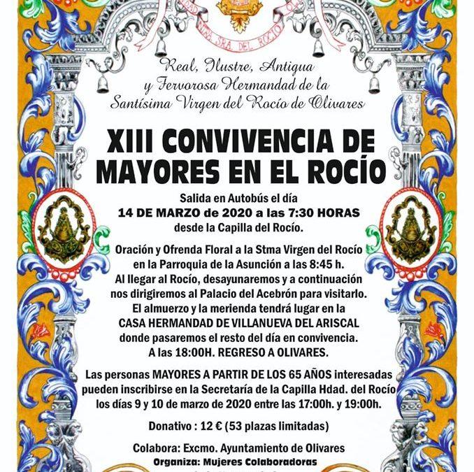 XIII Convivencia de Mayores en el Rocío